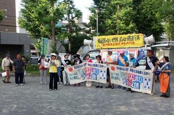 平和行進 2014-06-14 美江寺公園1.jpg